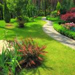 Schöne Gestaltungstipps für den Garten – für Profis und Anfänger
